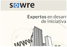 Sowre Consulting